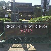 Bigmouth_bus