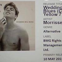 Wedding_bell_blues_details