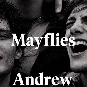 Mayflies.jpg